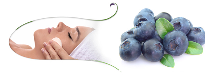 Blueberry Facials in and near South Fort Myers Florida